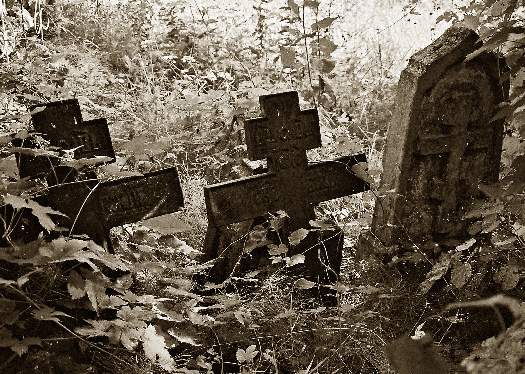 Папоўскія могілкі Лёзеншчына
